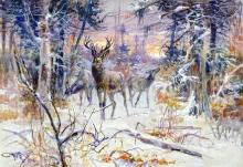 A Deer in a Snowy Forest