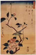 Camellia and Bush Warbler -  Hiroshige