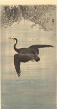 Cormorant - Ohara Koson
