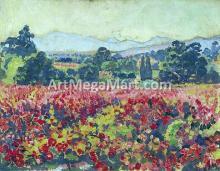 Les vignes a Saint-Clair